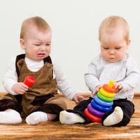 說「不行」會造成反效果!當孩子搶走朋友的玩具時⋯⋯應對方法如何比較好呢?