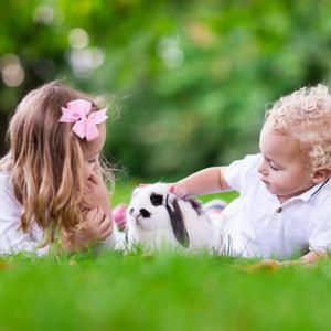 大人も子供も大満足!「無料で楽しめる」関東近郊の動物園3選