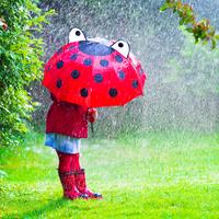 【プロが解説】突然のゲリラ豪雨!走って帰る?それとも待つ?