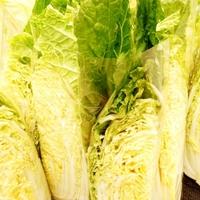 漬物も鍋も飽きた……冬の定番野菜<白菜>を使ったレシピを大公開♪