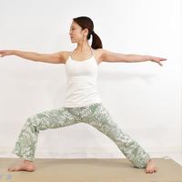 在家就能完成的美容瑜伽☆【用戰士姿勢維持兩手臂的美麗曲線♪】