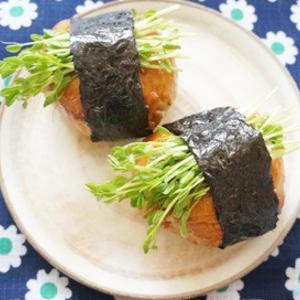 キッチンで再収穫できる!コスパ&栄養がすごい「豆苗」の節約レシピ